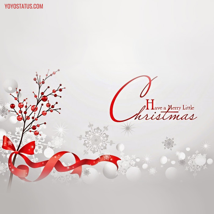 Have a Merry christmas status photo