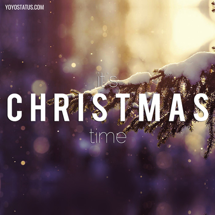 Its christmas time wishes photos