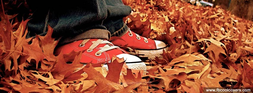 Converse Shoes Cover Pictures