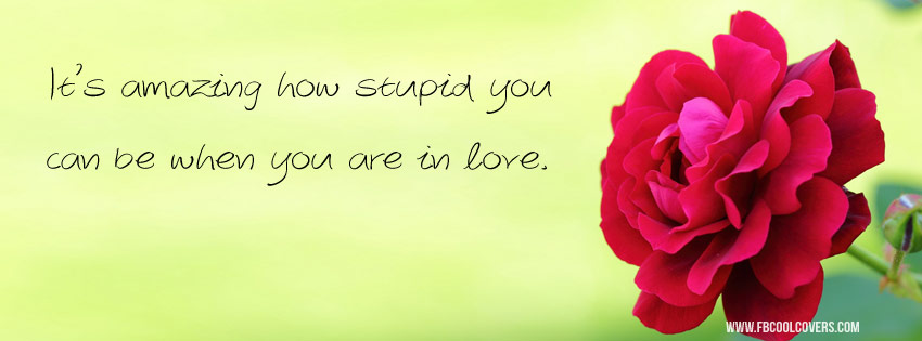Stupid Love Quote Cover Photo